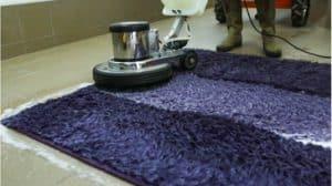 המלצה ניקוי שטיחים בהוד השרון