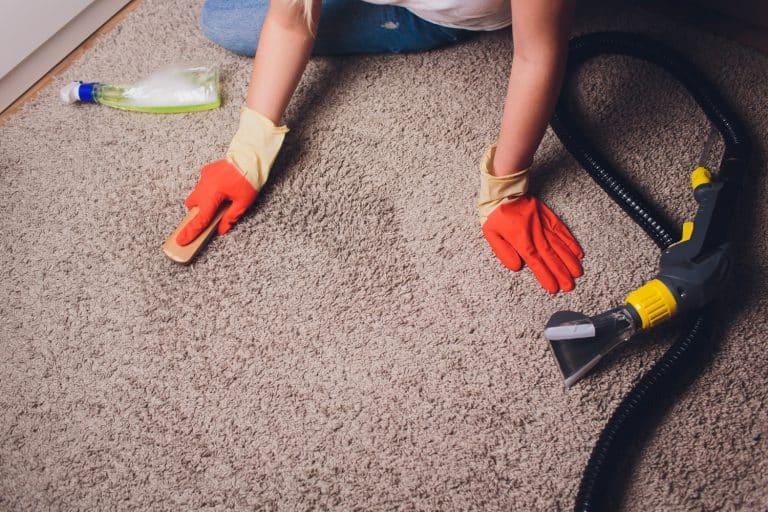 המלצה כמה עולה ניקוי שטיחים וספות מחיר