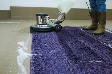 מחיר ניקוי שטיחים בבית שמש