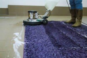 ניקוי שטיחים בהוד השרון מומלץ