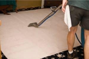 המלצה ניקוי שטיחים בהרצליה