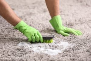 ניקוי שטיחים בקרית ביאליק מומלץ