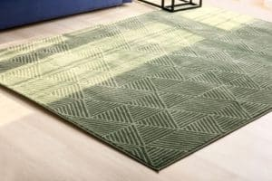 ניקוי שטיחים בשרון מומלץ